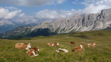 Dolomites 2012